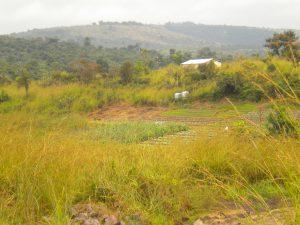 Vue Site Loukakou 2
